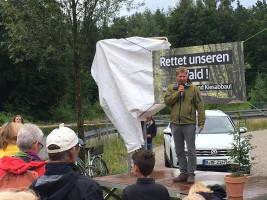 Buche aus Hambacher Forst in Neuried gepflanzt